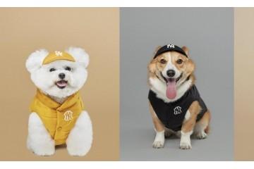 潮宠出街特有看头MLB推出全新PET秋冬限量潮宠服饰系列